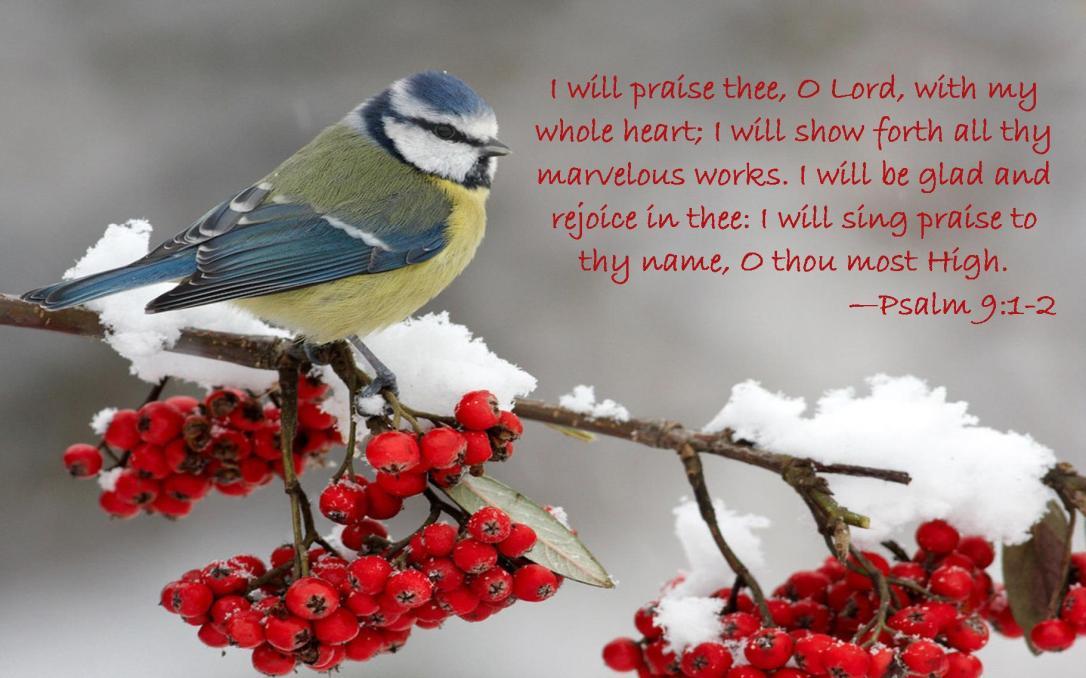 Psalm 9 1-2